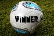 Мяч футбольный Winner LENZ FIFA APPROVED фото