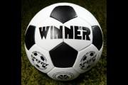 Мяч футбольный тренировочный Winner SPEEDY фото